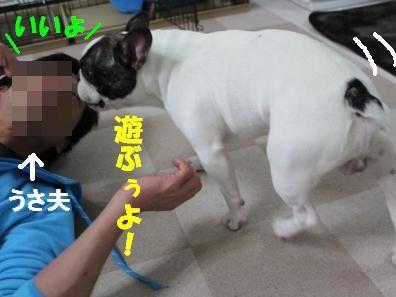 1-1-1_20101117115241.jpg