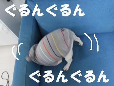 1-1_20110223112652.jpg