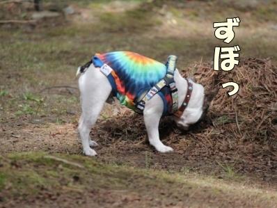 10-1_20111110104615.jpg