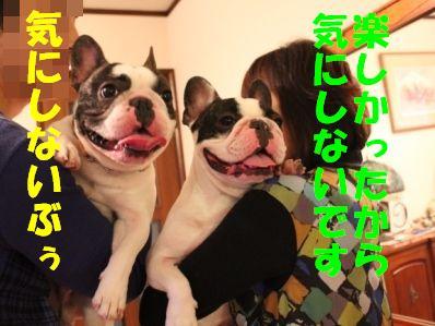 10_20110113152859.jpg
