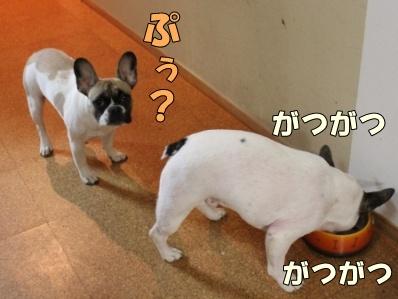 10_20111110091954.jpg