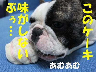 11-1_20110309104251.jpg
