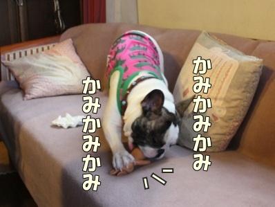 11_20120125165824.jpg