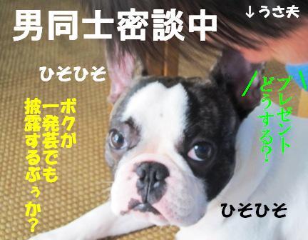 1_20100701121603.jpg