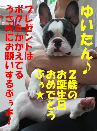 1_20100806140226.jpg
