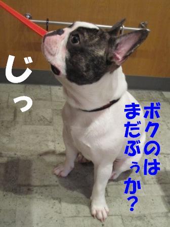 1_20100806143628.jpg