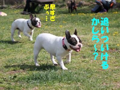 1_20110510114735.jpg