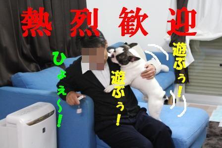 2-1_20101115163229.jpg