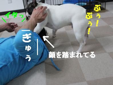 2-1_20101117115241.jpg