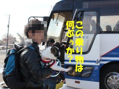 バス1-2