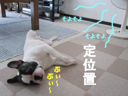 2_20100712105431.jpg
