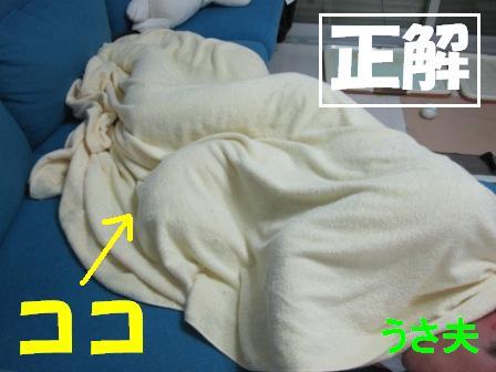 2_20100927140504.jpg