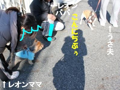 2_20110107152721.jpg