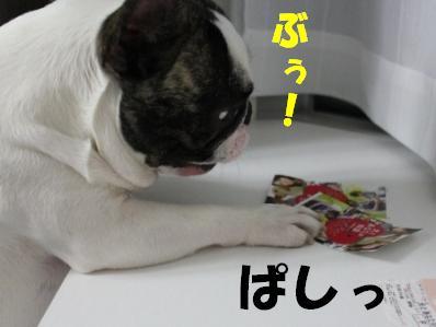 2_20110221094143.jpg