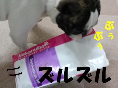 2_20110222164659.jpg