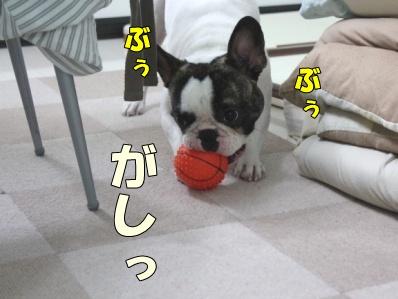 2_20110808144910.jpg