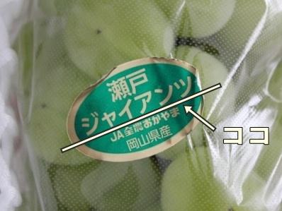 2_20111021132417.jpg