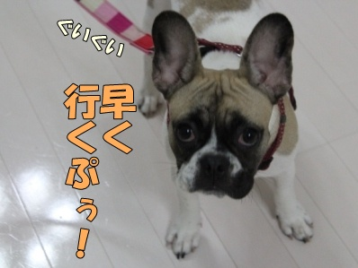 2_20111118094401.jpg