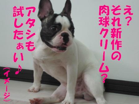 3-1_20100713115836.jpg