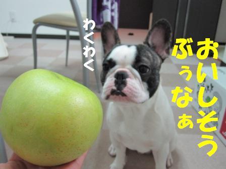 3-1_20100910105726.jpg