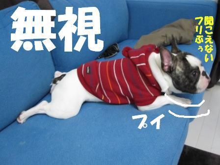 3-1_20101102123141.jpg