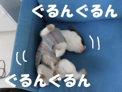3-1_20110223112651.jpg