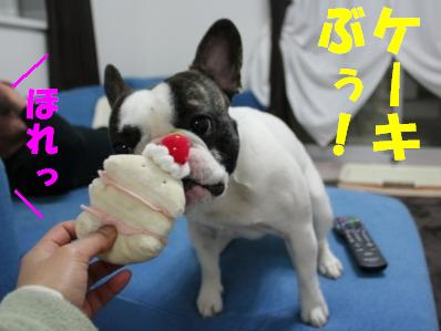 3-1_20110309104231.jpg