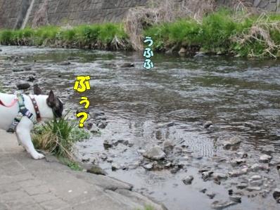 3-1_20110527135506.jpg
