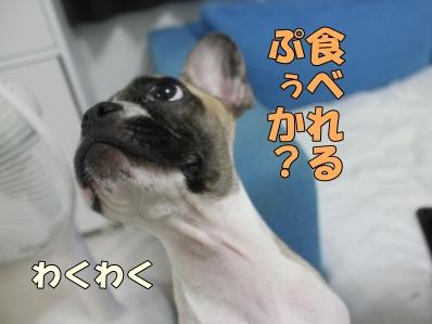3-1_20110805135457.jpg