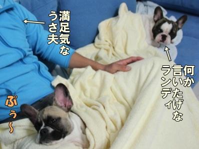 3-1_20111004144852.jpg