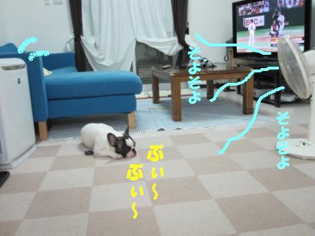 3_20100804162452.jpg
