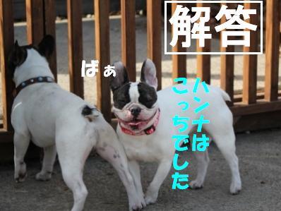 3_20110510114734.jpg