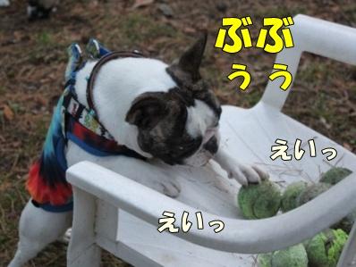 3_20111110091933.jpg