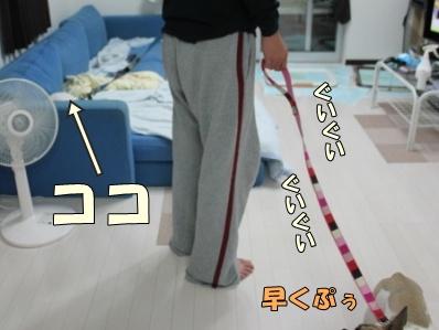 3_20111118094401.jpg