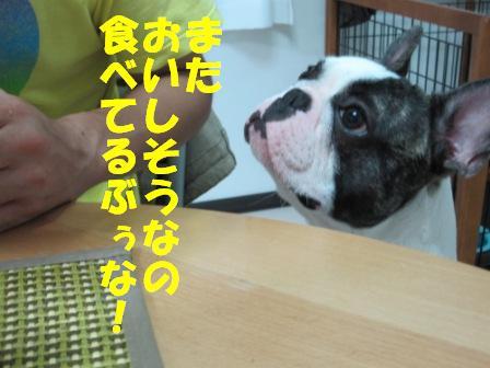 4-1_20100824105655.jpg