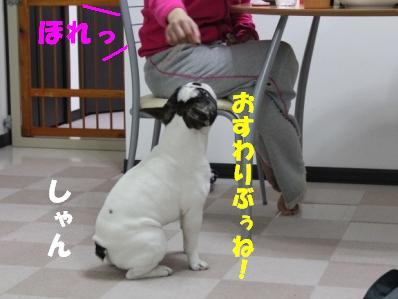 4-1_20110208140652.jpg