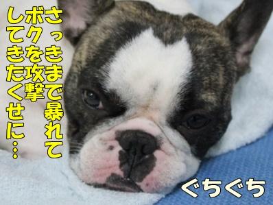 4-1_20111004144852.jpg