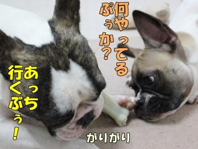 4-1_20111017163947.jpg
