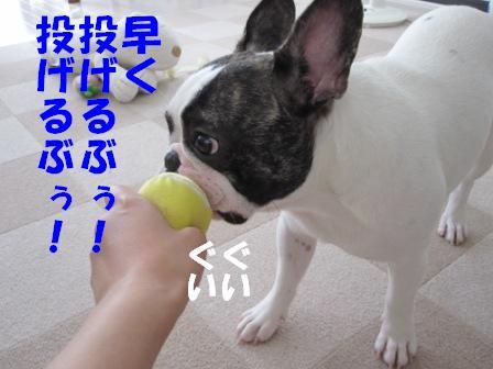 4_20100805143614.jpg