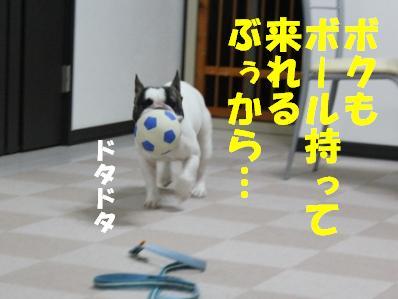 4_20110221094143.jpg