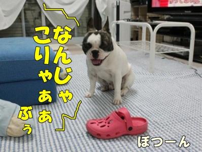 4_20110609143834.jpg