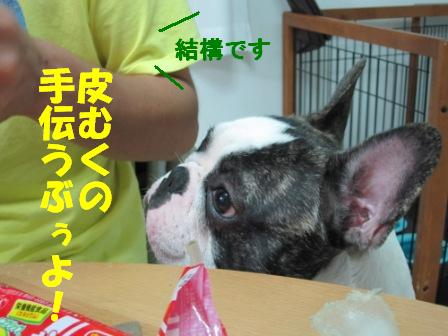 5-1_20100824105655.jpg