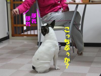 5-1_20110208140651.jpg
