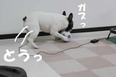 5-1_20110414104028.jpg