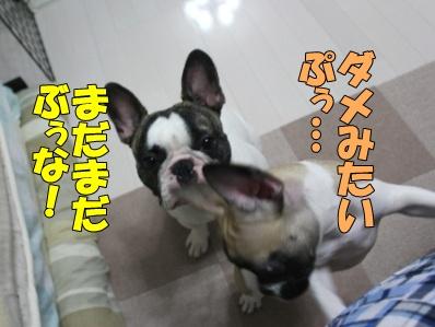 5-2_20110712160819.jpg