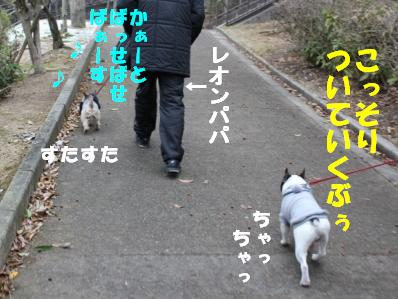 5_20110118121246.jpg
