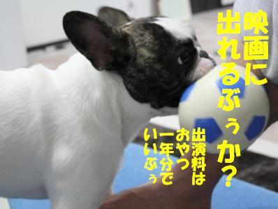 5_20110221094143.jpg