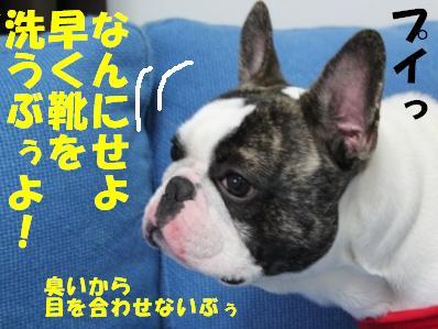 5_20110302101749.jpg