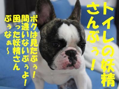 5_20110304145017.jpg