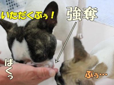 5_20110722101319.jpg